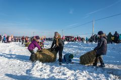 装入在节日冬天乐趣的干草的快活的竞争 免版税库存照片