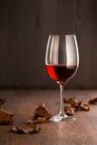 装瓶充分的玻璃葡萄树寿命红色不起泡的酒 库存照片