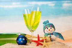 装瓶和两块玻璃用香槟,雪人,圣诞节球, 库存照片