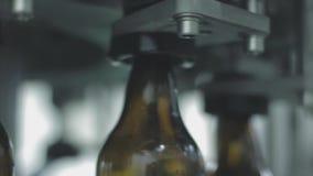 装瓶啤酒工厂 股票视频