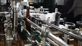 装瓶的技术线啤酒在啤酒厂 在工厂倒空在一条线的棕色瓶 继续前进传动机的瓶 影视素材