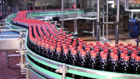 装瓶的瓶的生产线 影视素材