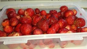 装箱的草莓 免版税库存照片