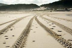 装胎在一个越野驾驶的海边沙丘的标记 免版税库存图片
