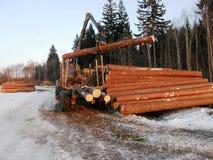 装载木头的拖拉机 免版税库存照片