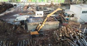 装载者在工厂的装载日志处理的木头 股票视频