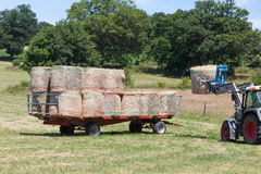 装载围绕在拖车上的干草捆的农夫 库存图片