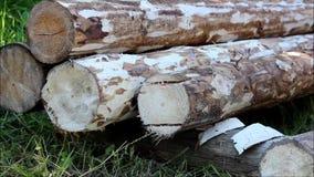 装配一个木制框架和修建房子 俄国 数在一个木房子里金属化一个地板的建筑的定象 股票录像