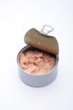 装食物金枪鱼于罐中 库存照片