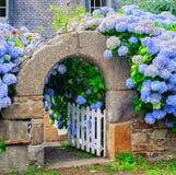 装饰一个门的蓝色花在布里坦尼,法国 免版税图库摄影