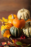 装饰南瓜和秋叶为万圣夜 库存图片