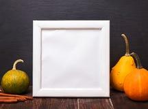 装饰南瓜和空的白色框架 免版税图库摄影