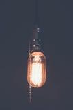 装饰古色古香的爱迪生带领了轻的样式细丝电灯泡, 免版税库存图片