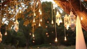 装饰古色古香的爱迪生样式细丝电灯泡垂悬在森林的,玻璃灯笼,灯装饰庭院在 股票视频