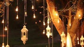 装饰古色古香的爱迪生样式细丝电灯泡垂悬在森林的,玻璃灯笼,灯装饰庭院在 股票录像