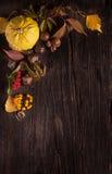装饰品用南瓜和秋叶 免版税图库摄影