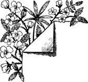 装饰品 免版税库存照片