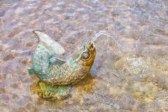 装饰喷泉鱼 免版税库存图片