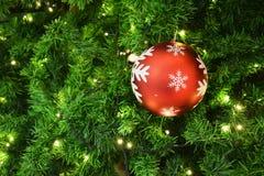 装饰圣诞树和垂悬在树的圣诞灯 免版税库存图片