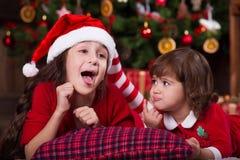 装饰圣诞树的两个妹 新 库存照片