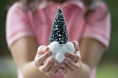 装饰圣诞树的系列 库存图片