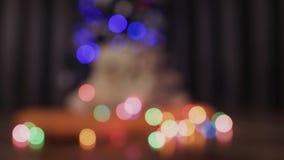 装饰圣诞树被弄脏的背景,诗歌选和两戏弄玩具熊 股票录像