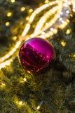 装饰圣诞节装饰在一棵针叶树的绿色常青分支的中看不中用的物品在圣诞节市场上在布拉格 图库摄影