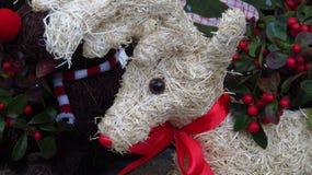 装饰圣诞节驯鹿由干草特写镜头制成 图库摄影