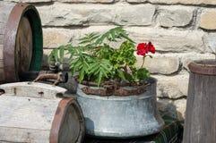 装饰在庭院里 用于过去的传统保加利亚装置-老奶油搅乳棒、木酒桶和caludron 库存图片