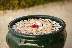 装饰在绿色碗的花的布置在赤素馨花羽毛水开花 植物的构成 芳香温泉 库存图片