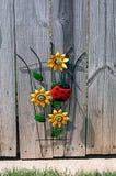 装饰太阳花和瓢虫在篱芭 免版税库存图片