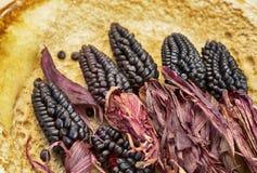 装饰季节性玉米 免版税库存图片