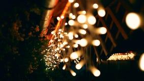 装饰室外串点燃垂悬在树在庭院里在夜间 股票录像