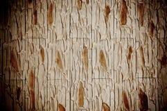 装饰家庭石纹理墙壁 库存图片