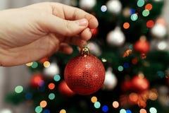 装饰家庭结构树的圣诞节 举行红色球ornamen的手 免版税库存照片
