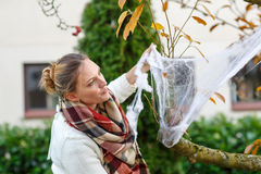 装饰家庭菜园的妇女为与蜘蛛网的万圣夜 免版税库存图片