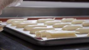 装饰小饼用白色牛奶巧克力的糖果商 影视素材