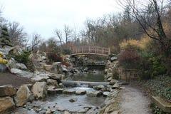 装饰庭院树石头和池塘 免版税库存照片