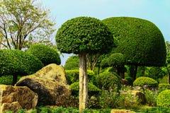 装饰庭院,一个完善的地方 库存照片