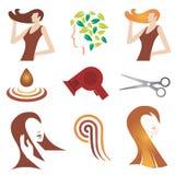 装饰性的头发图标集 皇族释放例证