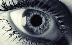 装饰性的眼睛眼线膏做铅笔用工具加工白人妇女 单色 免版税库存照片