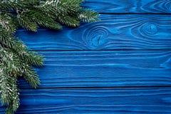 装饰新年庆祝的圣诞树与毛皮在蓝色木背景上面veiw大模型的树枝 库存照片
