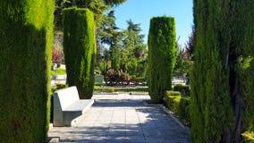 装饰木教规在一个美丽的绿色公园 蓝色无云的天空 石长凳和方形的混凝土板路面 库存图片