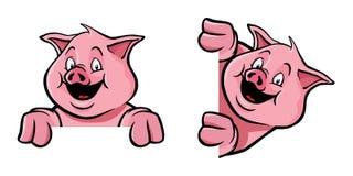 装饰框架猪 免版税库存图片