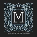 装饰框架 原始的叶子装饰品 婚姻 公司本体的,品牌模板 向量例证