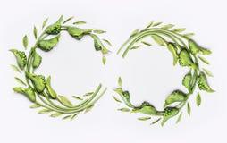装饰植物的花双花圈框架由绿色不同的花和叶子,平的位置制成 库存图片