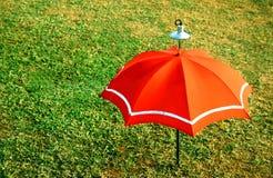 装饰橙色伞 免版税库存图片
