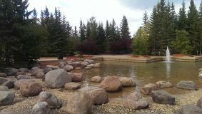 装饰池塘3 库存图片