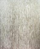 装饰灰泥纹理 免版税图库摄影