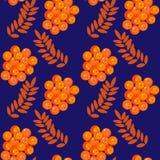 装饰物山脉灰叶子和莓果  抽象无缝 免版税库存照片